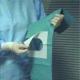 Teli Copertura Pazienti Tnt Sterile 10pz