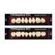 Sr Orthoplane DCL Colori Chromacop X8 1pz