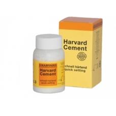 Harvard Cement Polvere N.3 100gr 1pz